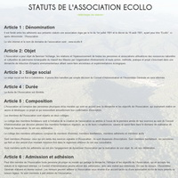 les statuts de l'association...